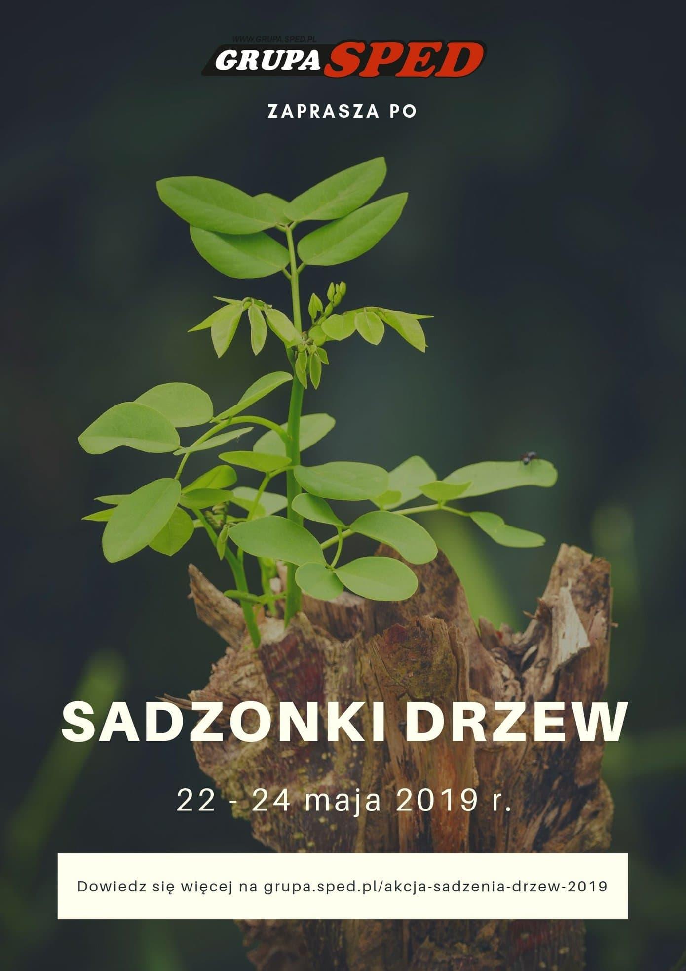 Firma Sped rozdaje sadzonki